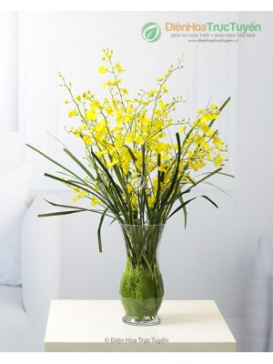 Bouquet of Oncidium orchids