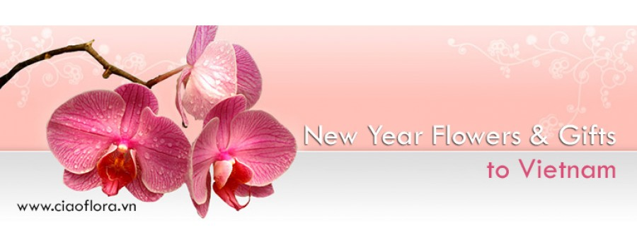 New Year Flowers & Gift