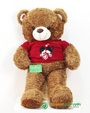 Brown Bear in Red