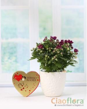 Lovely gift set