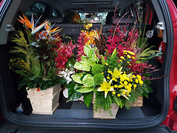 For the best care, most of Ciaoflora's flowers can be delivered in car